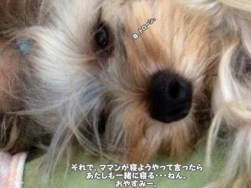 IMG_6733 0728