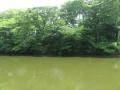 暑い五色沼