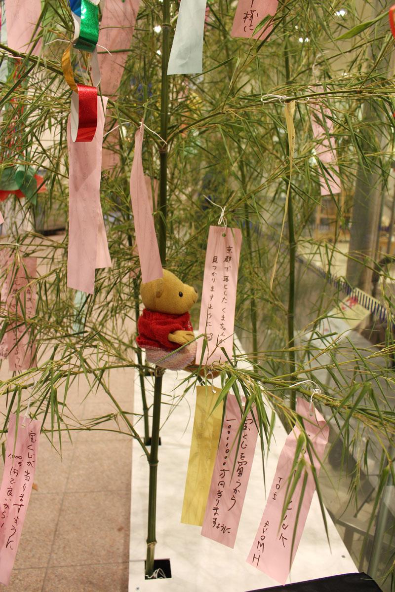 笹竹に短冊を結ぶ 150701