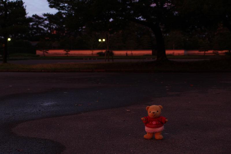 夕陽に染まる・駿府城公園で 150701