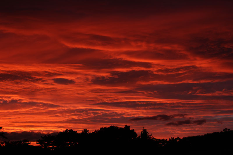 駿府城公園の夕焼け空 150701