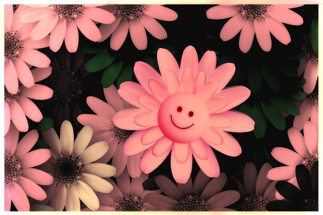flowers-717609_640.jpg