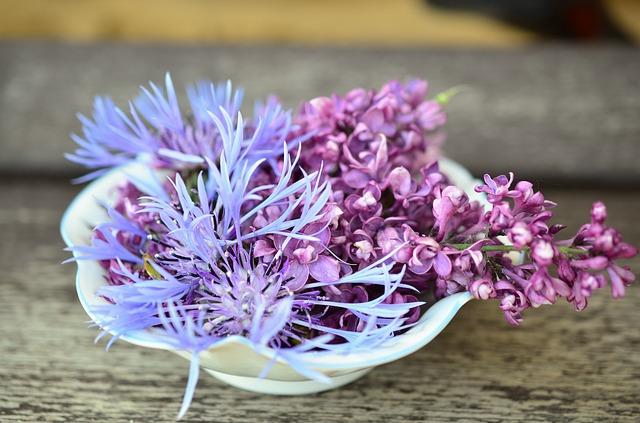 flowers-765781_640.jpg