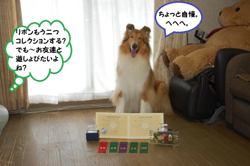 amenohi06.jpg