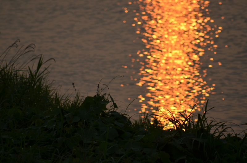 川面の夕陽-4