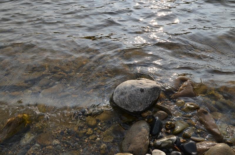 河原の石-1