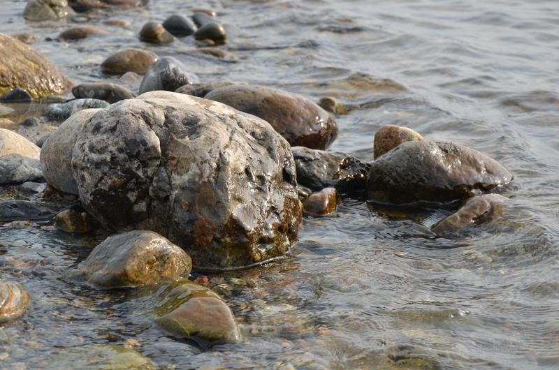 河原の石-3