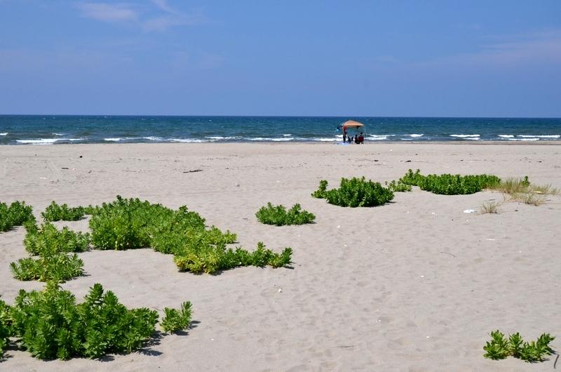 夏の浜辺-2