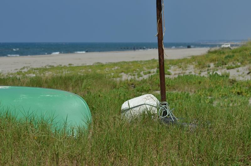 浜辺のスナップ-1