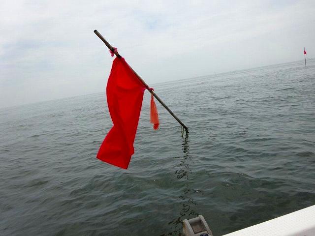 大野沖タコ釣り (50)