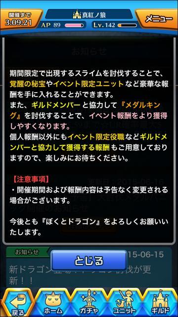 medapani_2.jpg