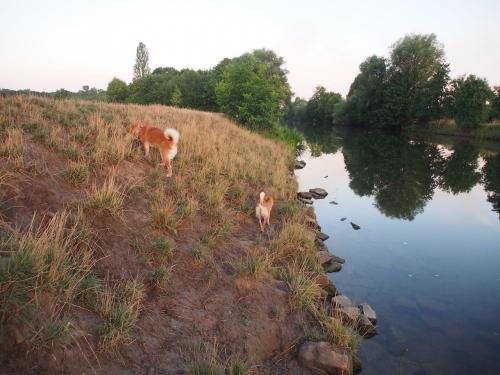 川のそば2