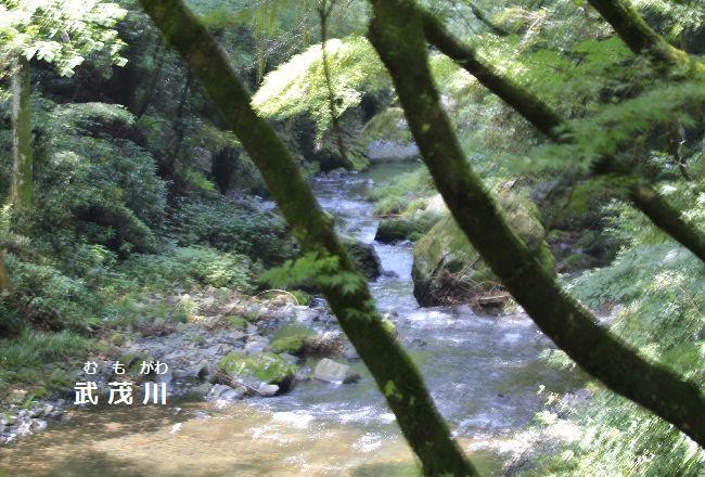 雲巌寺を流れる武茂川