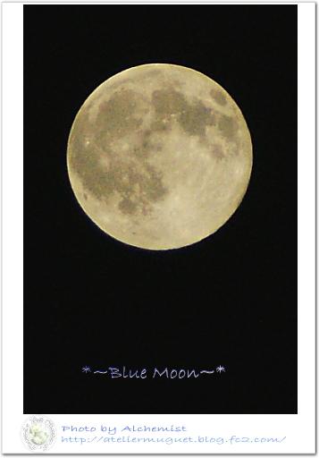 7n-bluem.jpg