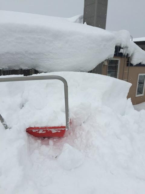 20150110雪かき2