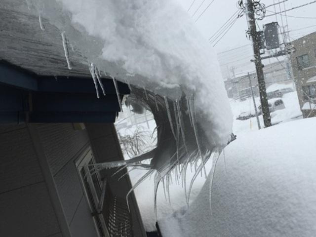 20150110雪かき3