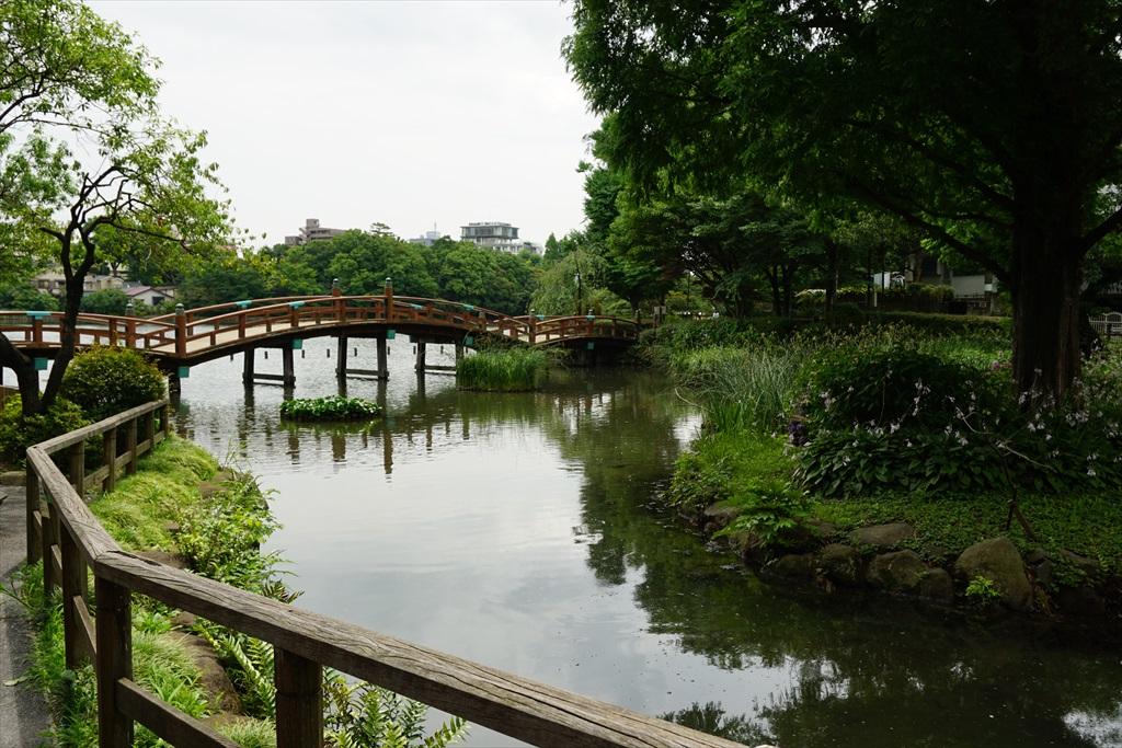 池月橋付近からの眺め_2