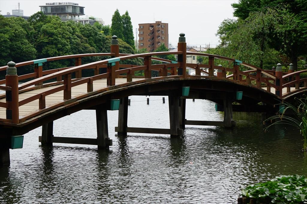 池月橋付近からの眺め_5