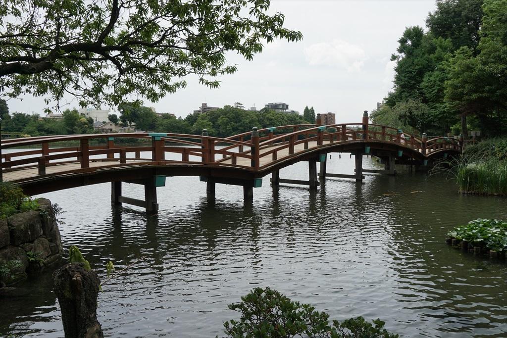 池月橋付近からの眺め_10