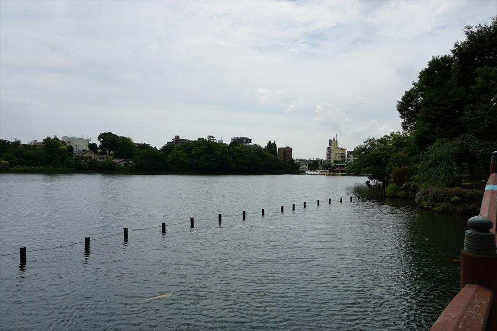 池月橋付近からの眺め_13