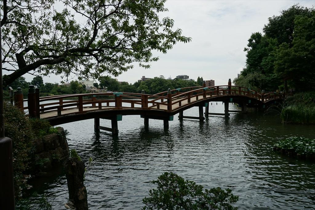 池月橋付近からの眺め_14
