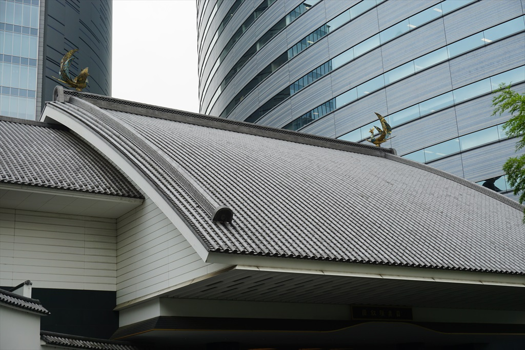 エントランスの屋根の上_4