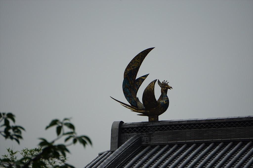 エントランスの屋根の上_3