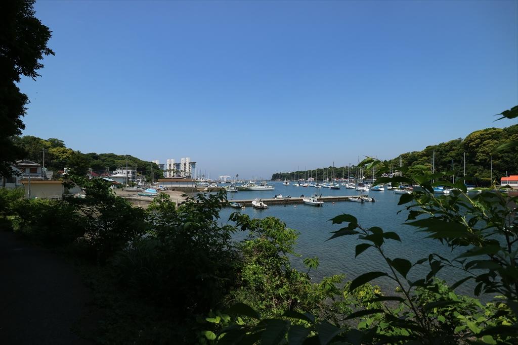 神社前の小網代湾最奥部や宮の前峠からの眺め_6