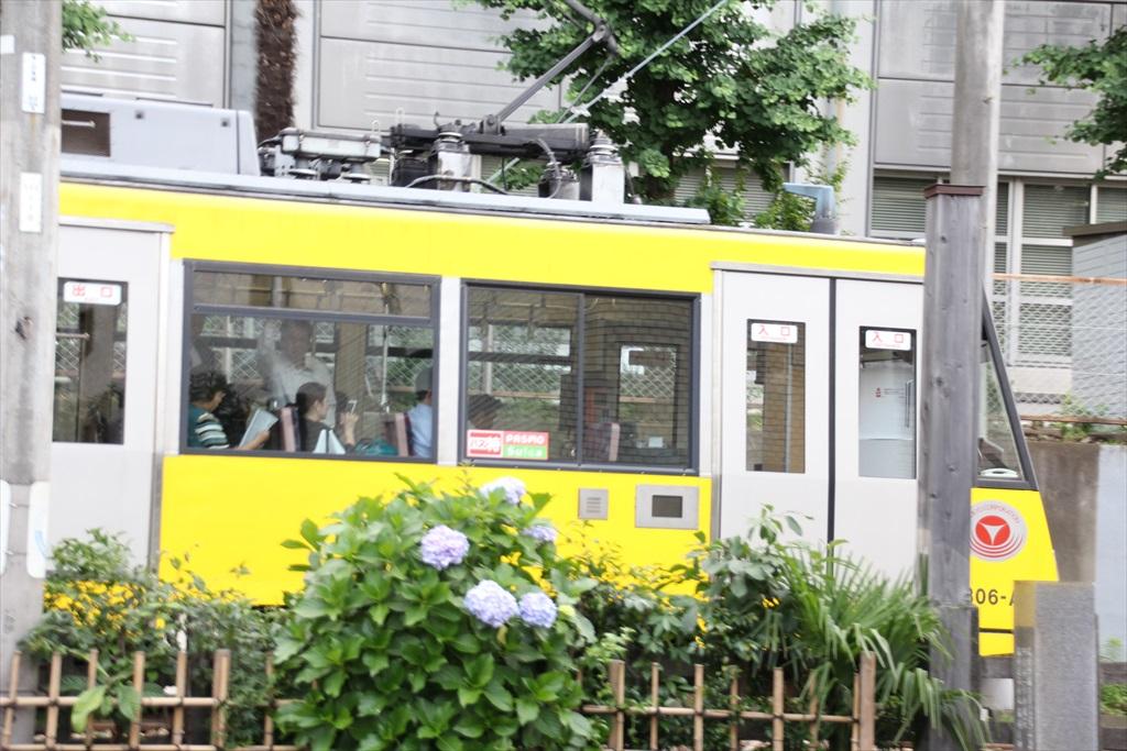 東急世田谷線_5