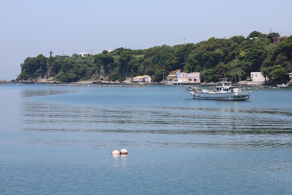 いつ見ても美しい小網代湾内の様子_11
