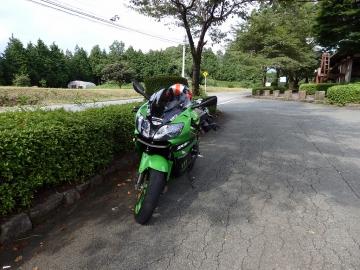 P7180054.jpg
