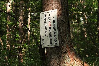 nagano_20150808_09.jpg