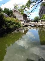 東寺の龍神池と龍