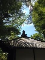 今熊野観音寺のてっぺん