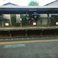 東福寺駅で熟睡