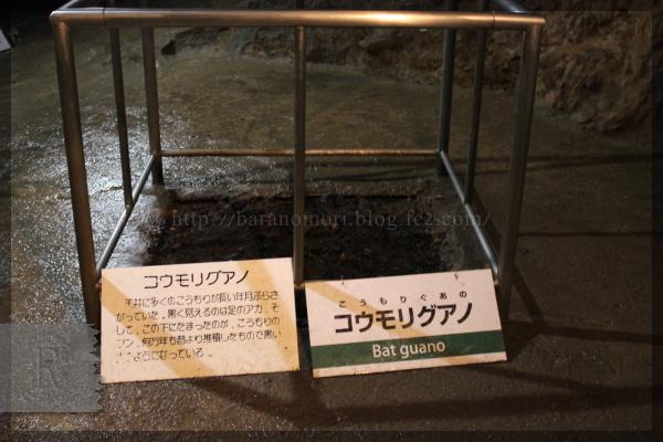 上野村 不二洞 20150801