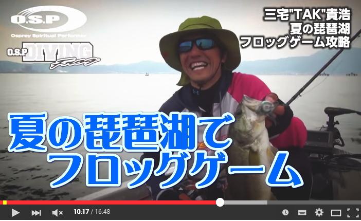 夏の琵琶湖でフロッグゲーム