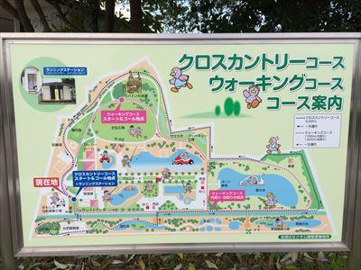 kazohanasaki3.jpg
