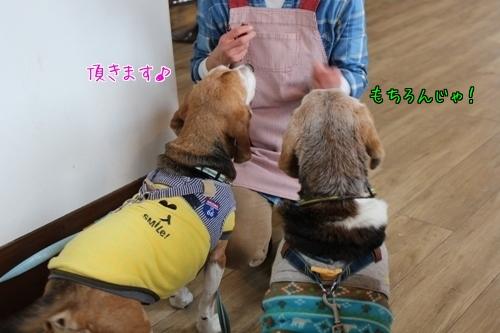 fritake-20141219-cafe07.jpg