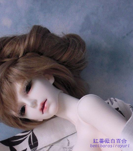 CIMG8140-のコピー