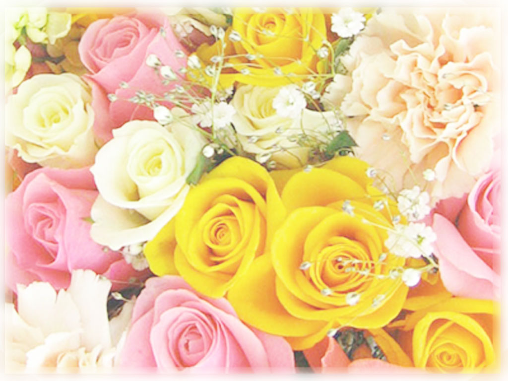 Flower1024.jpg