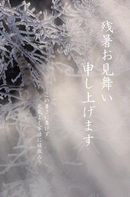 ーAWIMG_2643-X