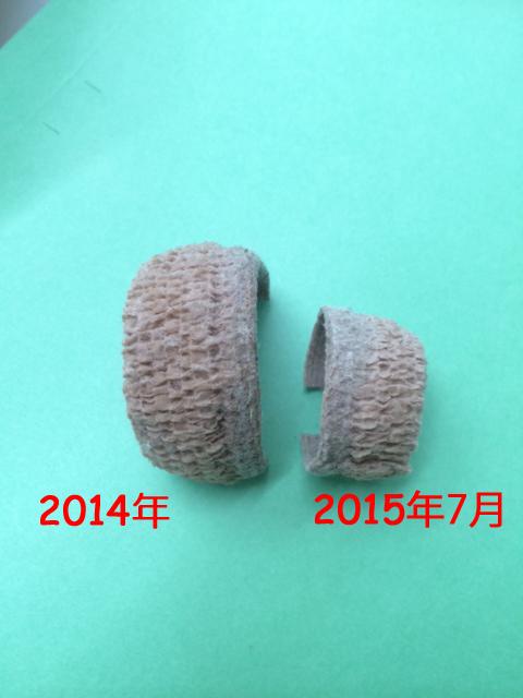福ちゃん20150704-1