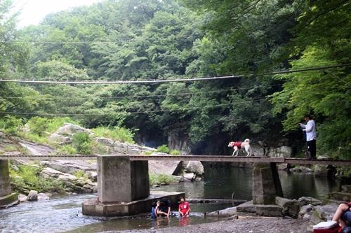 IMG_0456嵐山