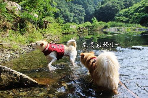 IMG_0503嵐山