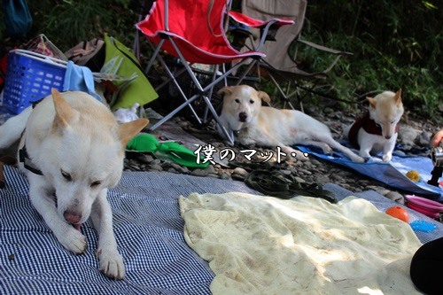 IMG_0497嵐山