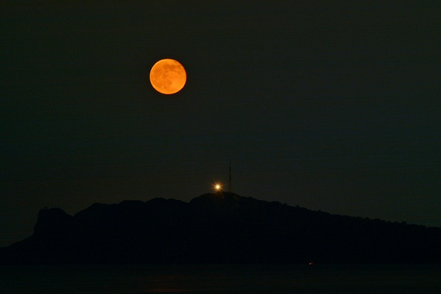 夏の月夜(2)