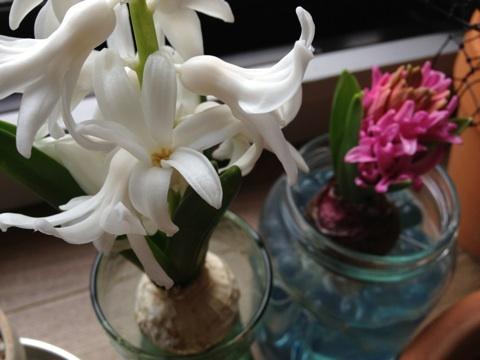 blossom note アクセサリー/ビーズ刺繍/ハンドメイド-ipodfile.jpg