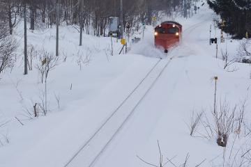 北海道旅行201502(17)
