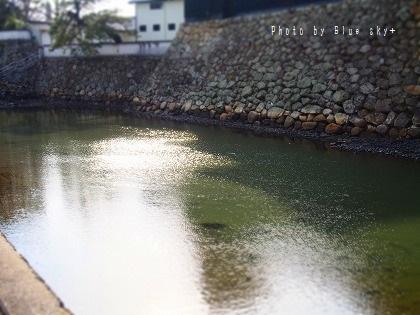 お堀-中津城